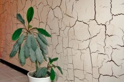 Фактурная штукатурка на стене